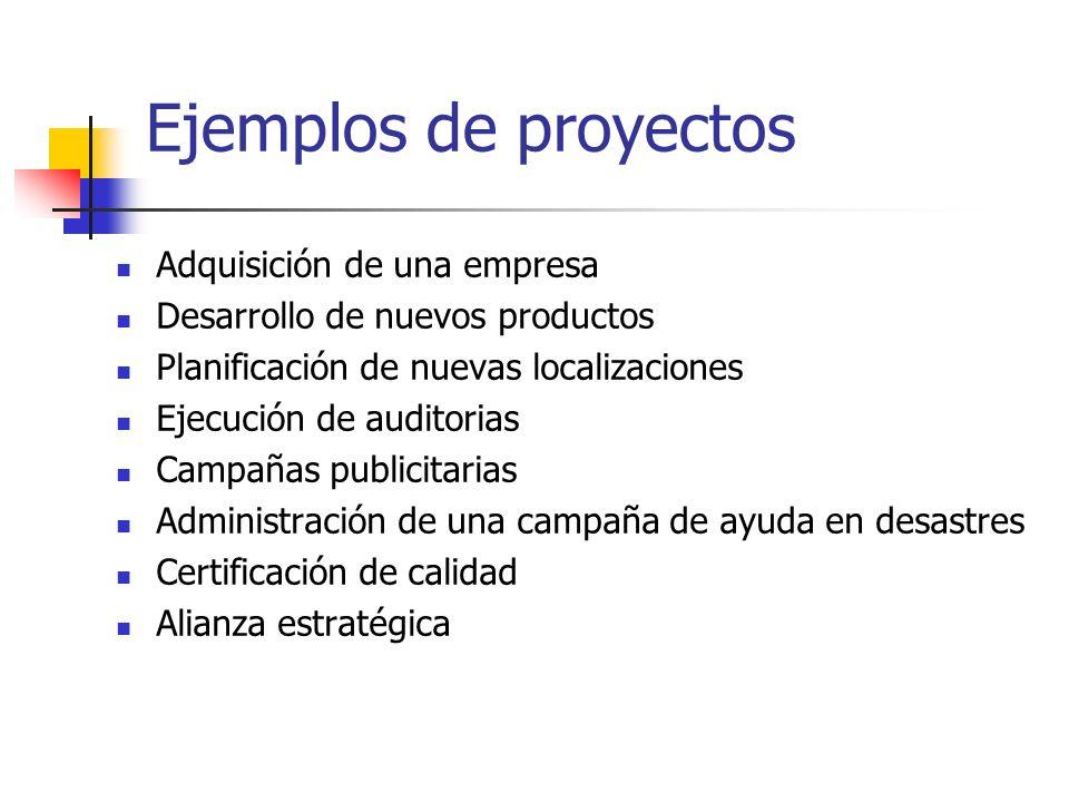Ejemplos de proyectos Adquisición de una empresa