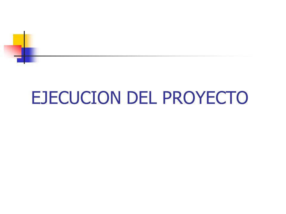 EJECUCION DEL PROYECTO