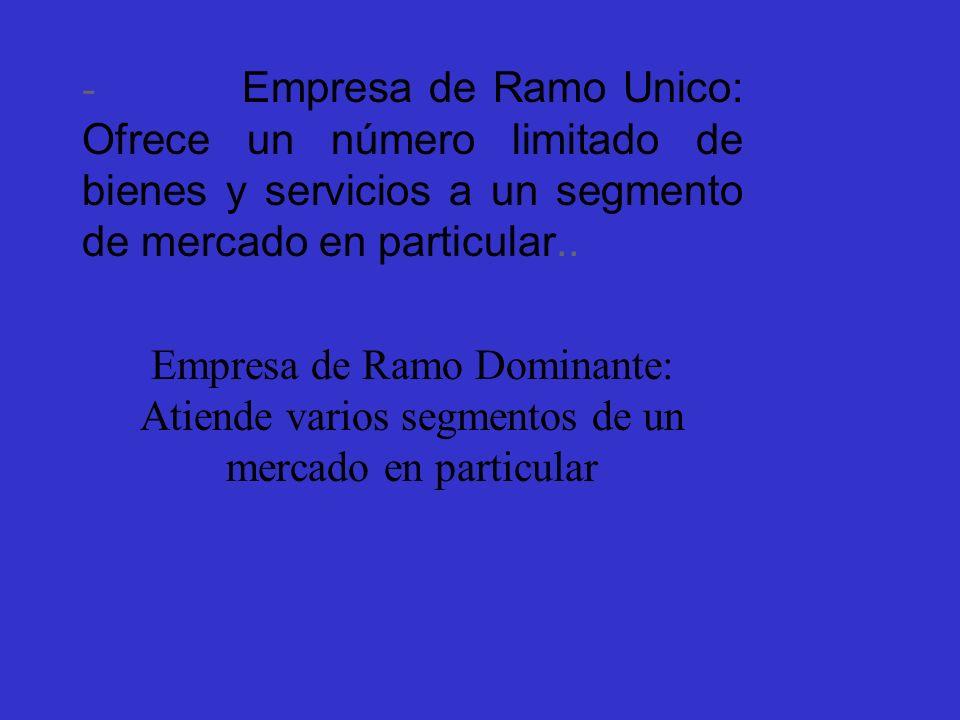 - Empresa de Ramo Unico: Ofrece un número limitado de bienes y servicios a un segmento de mercado en particular..