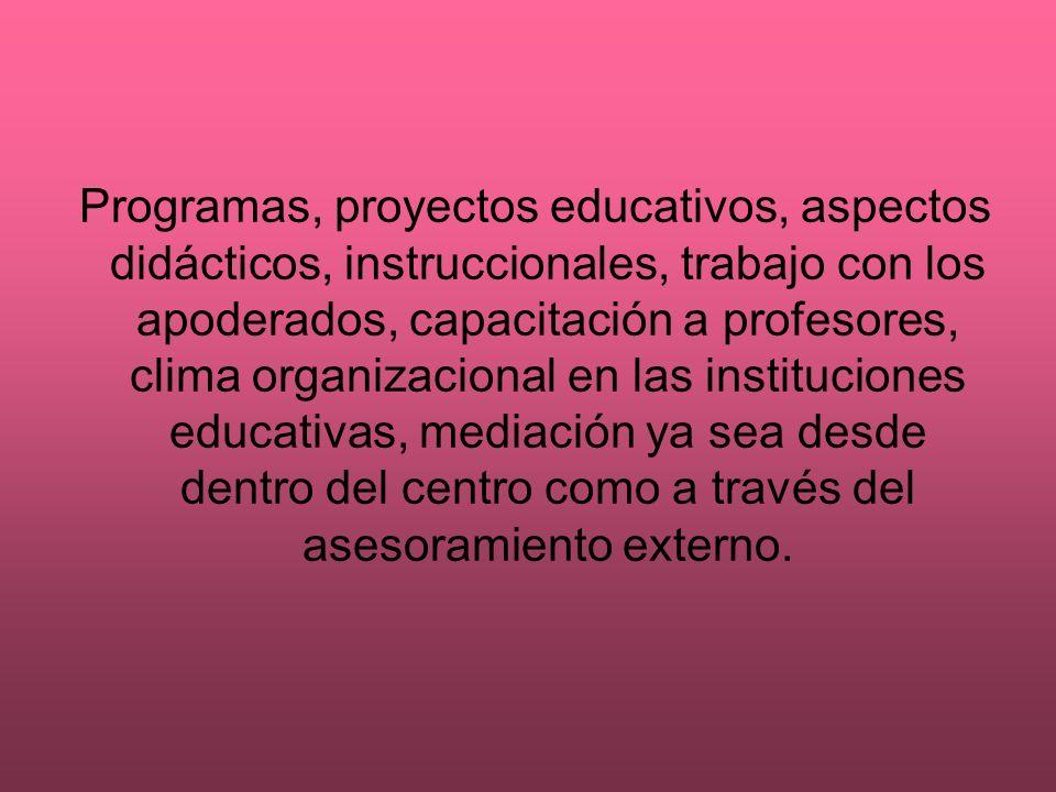 Programas, proyectos educativos, aspectos didácticos, instruccionales, trabajo con los apoderados, capacitación a profesores, clima organizacional en las instituciones educativas, mediación ya sea desde dentro del centro como a través del asesoramiento externo.