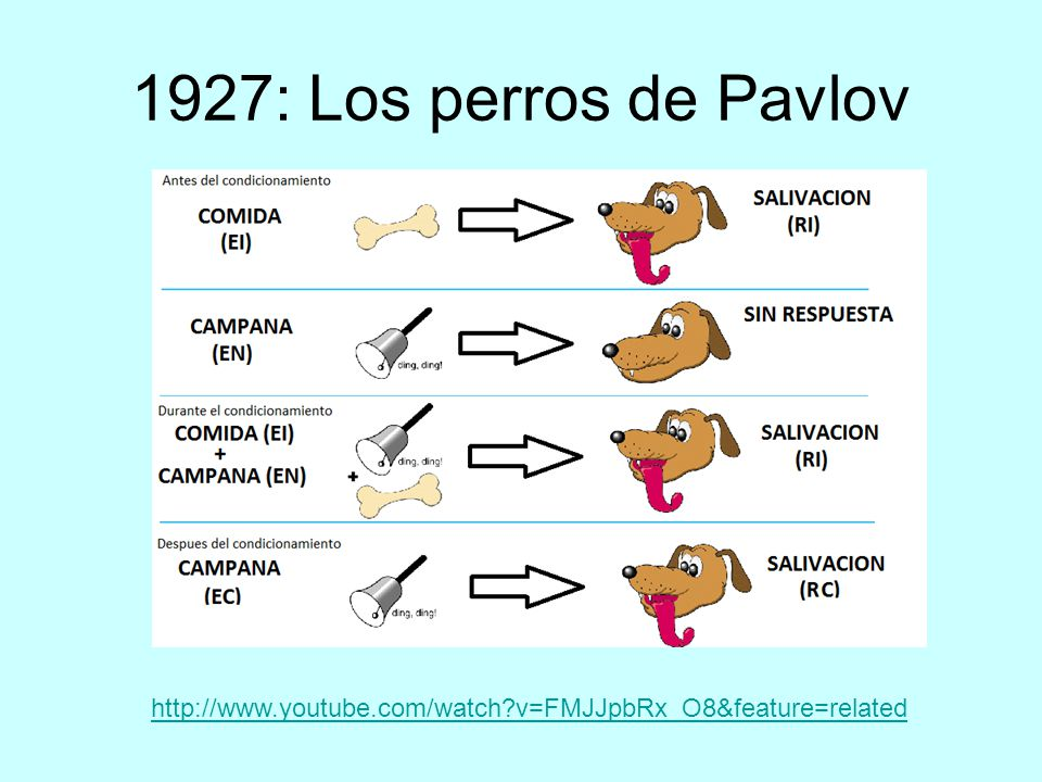 1927: Los perros de Pavlov   v=FMJJpbRx_O8&feature=related
