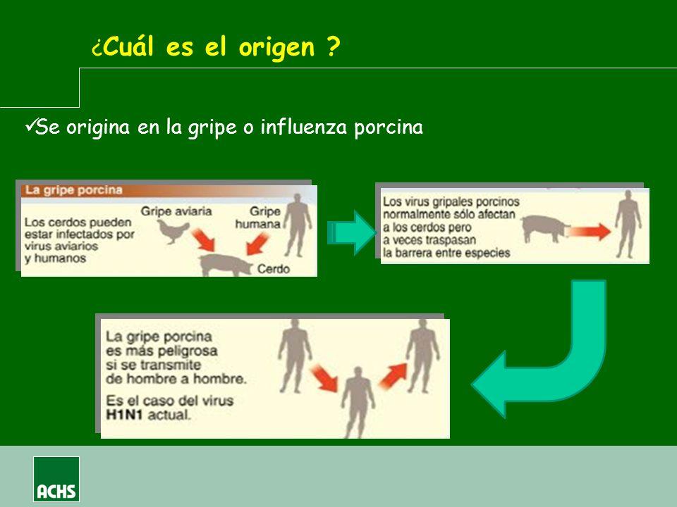 ¿Cuál es el origen Se origina en la gripe o influenza porcina
