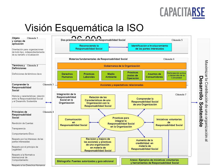 Visión Esquemática la ISO 26.000