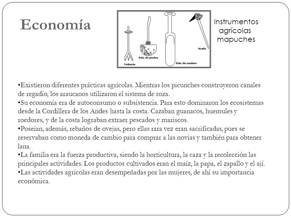 Economía Instrumentos agrícolas mapuches