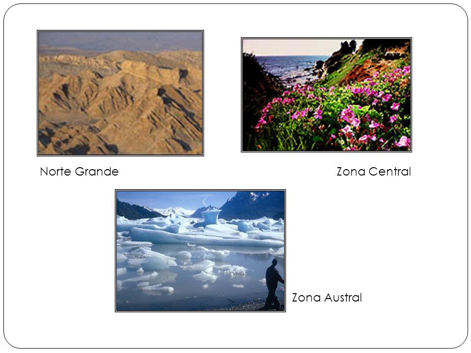 Norte Grande Zona Central Zona Austral
