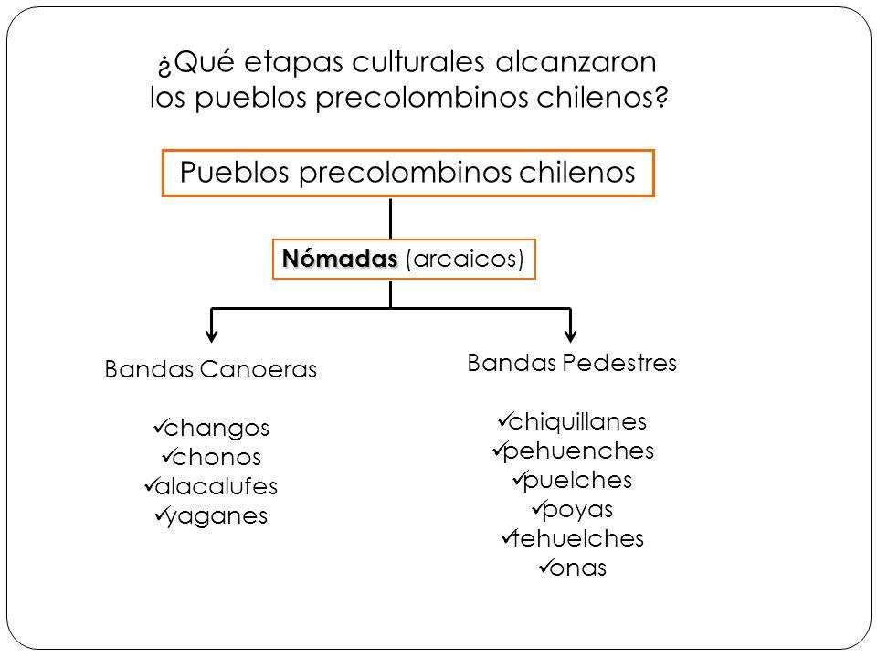 ¿Qué etapas culturales alcanzaron los pueblos precolombinos chilenos