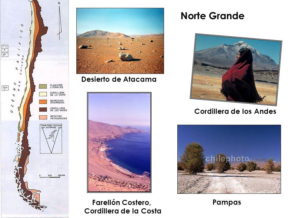 Norte Grande Desierto de Atacama Cordillera de los Andes
