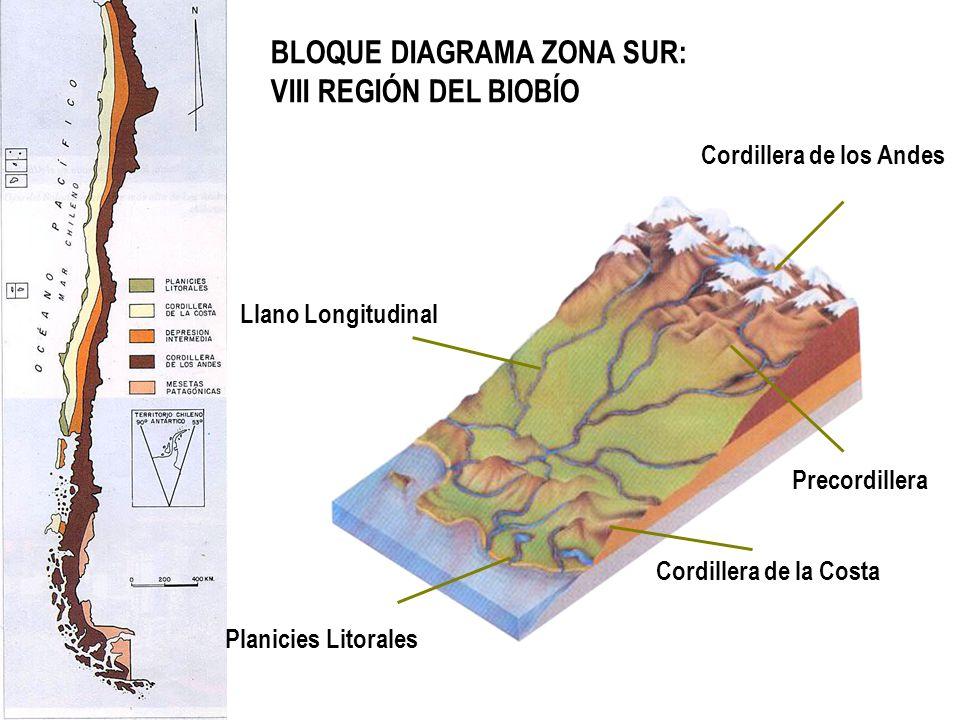 BLOQUE DIAGRAMA ZONA SUR: VIII REGIÓN DEL BIOBÍO
