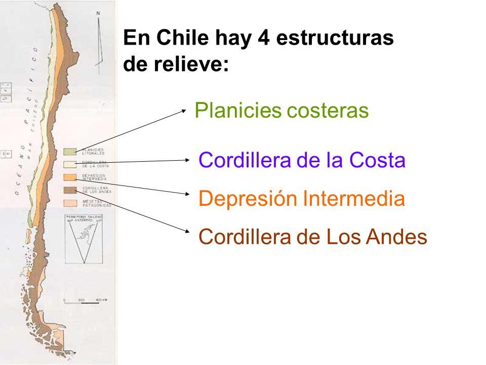 En Chile hay 4 estructuras