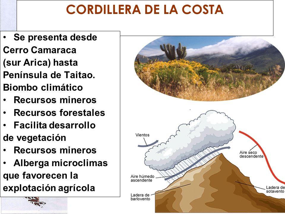 CORDILLERA DE LA COSTA Se presenta desde Cerro Camaraca