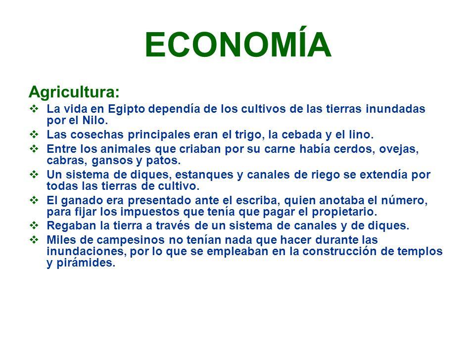 ECONOMÍA Agricultura: