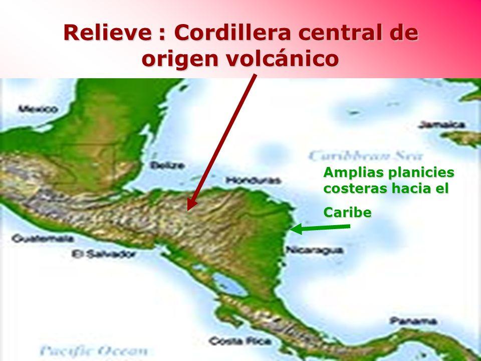 Relieve : Cordillera central de origen volcánico