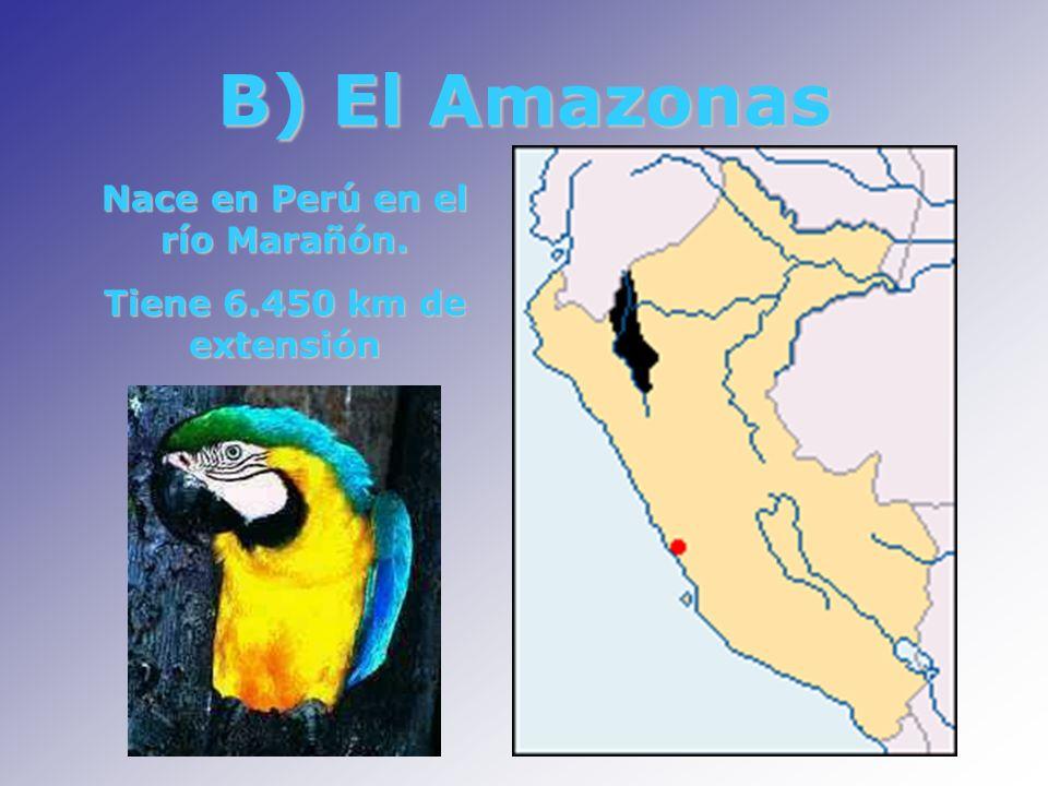 Nace en Perú en el río Marañón.
