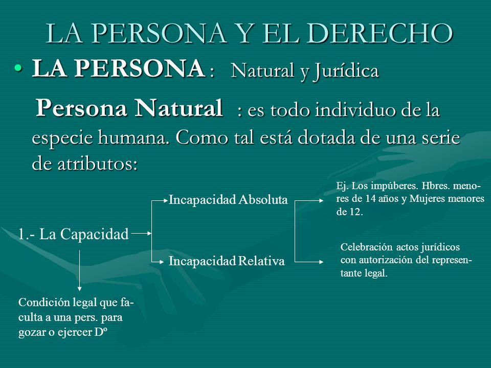 LA PERSONA Y EL DERECHO LA PERSONA : Natural y Jurídica