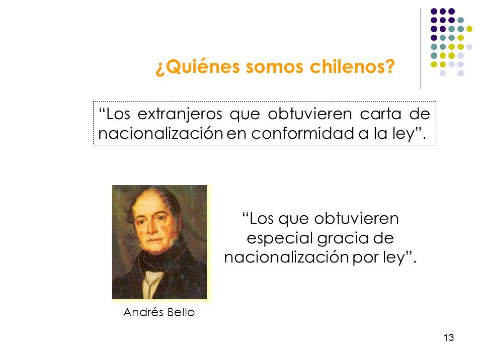 ¿Quiénes somos chilenos