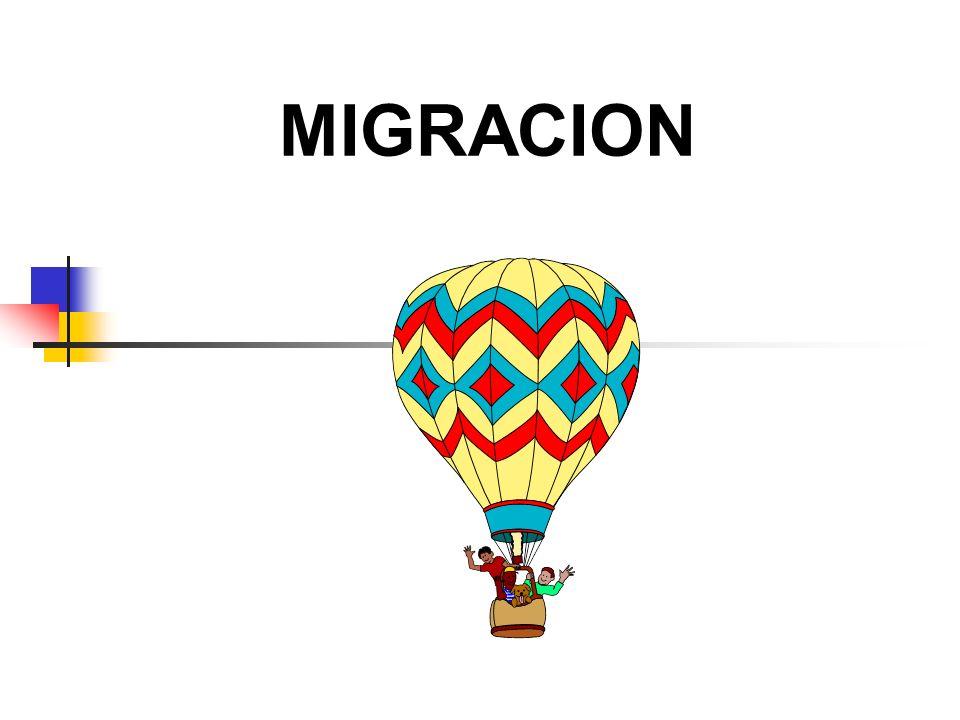 MIGRACION 41
