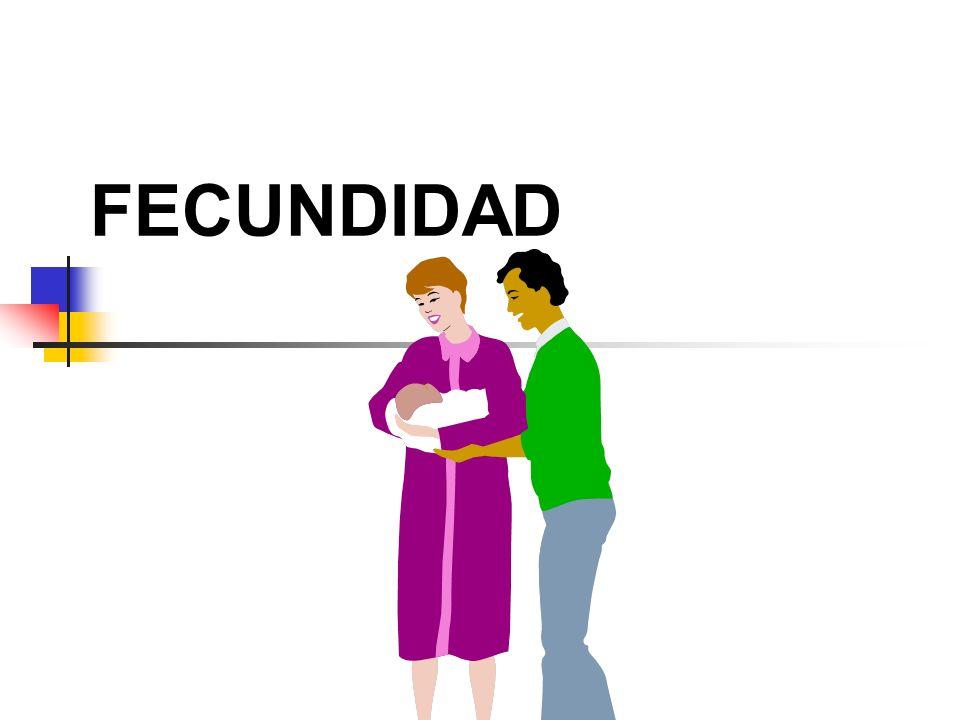 FECUNDIDAD 21