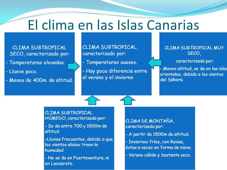 El clima en las Islas Canarias