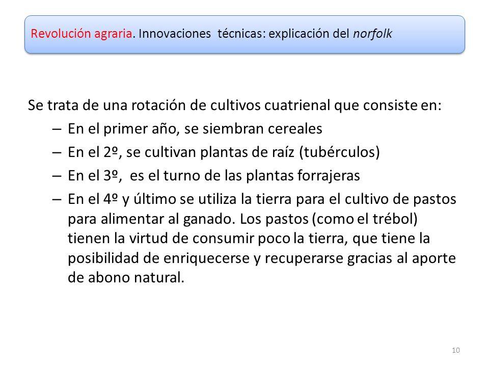 Se trata de una rotación de cultivos cuatrienal que consiste en: