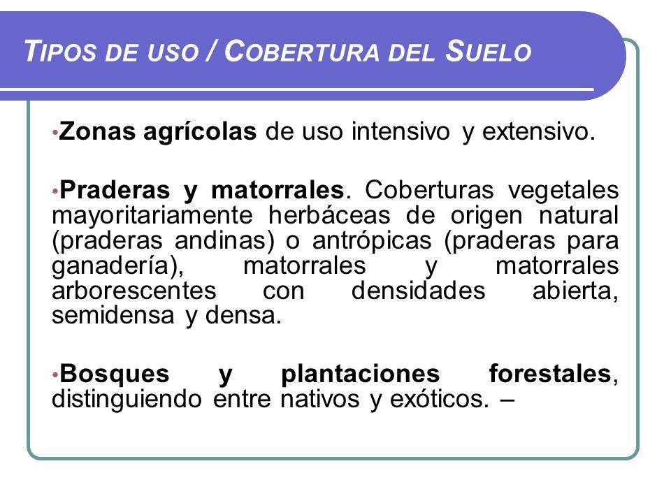 Tipos de uso / Cobertura del Suelo