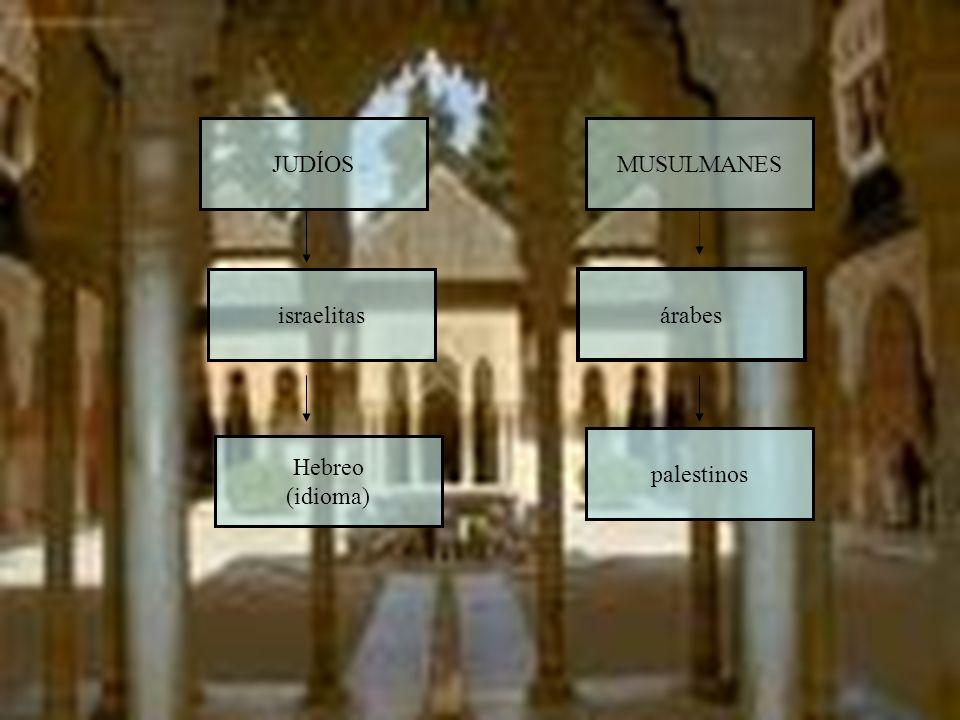 JUDÍOS MUSULMANES israelitas árabes palestinos Hebreo (idioma)