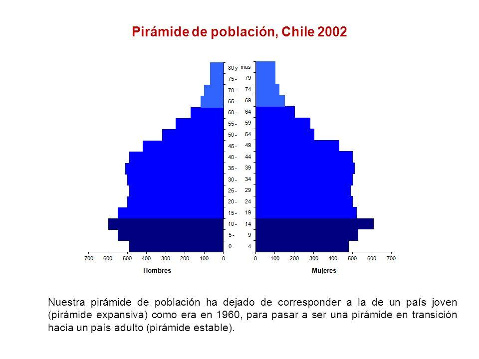 Pirámide de población, Chile 2002