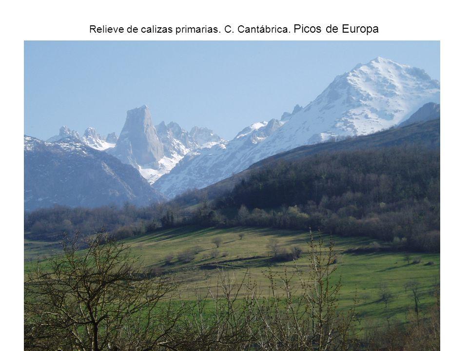 Relieve de calizas primarias. C. Cantábrica. Picos de Europa