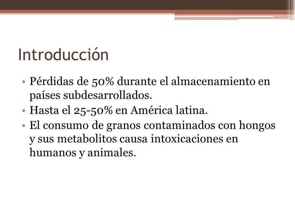 Introducción Pérdidas de 50% durante el almacenamiento en países subdesarrollados. Hasta el 25-50% en América latina.