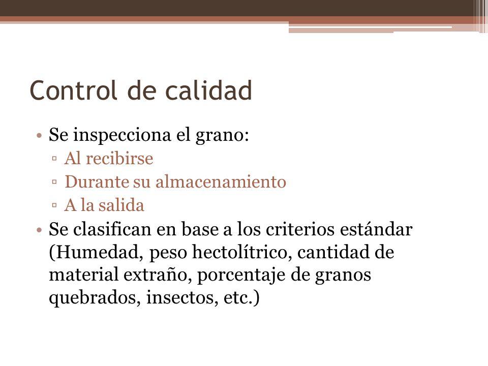 Control de calidad Se inspecciona el grano:
