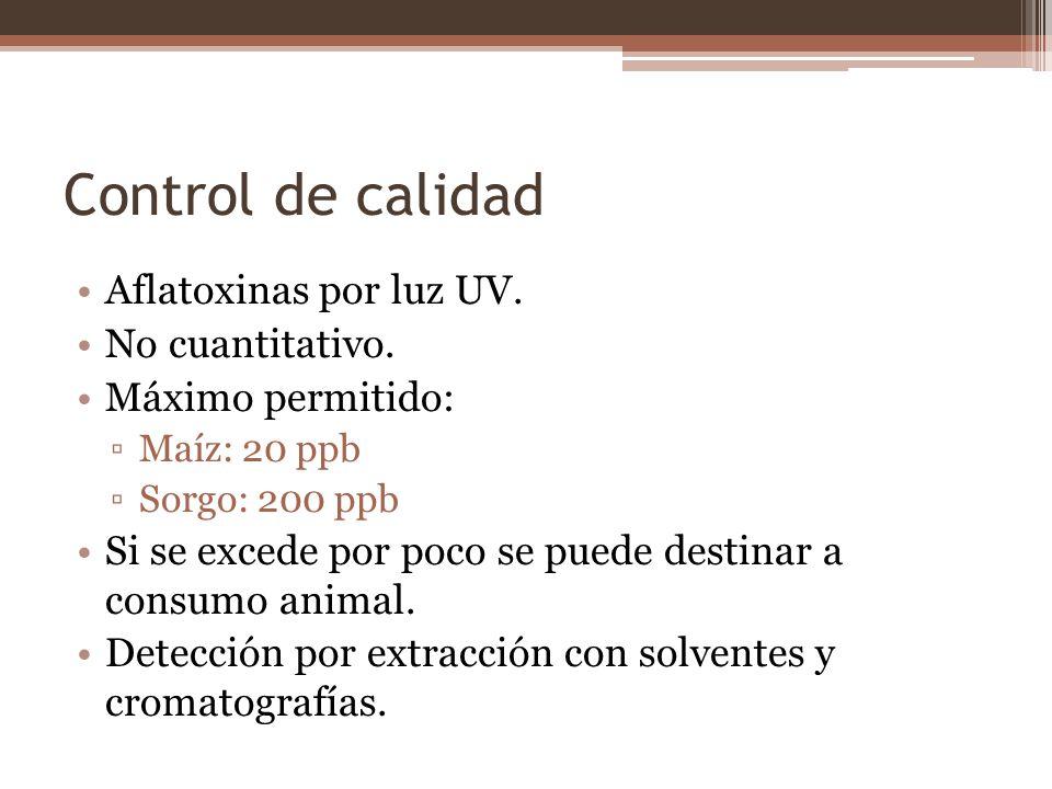 Control de calidad Aflatoxinas por luz UV. No cuantitativo.