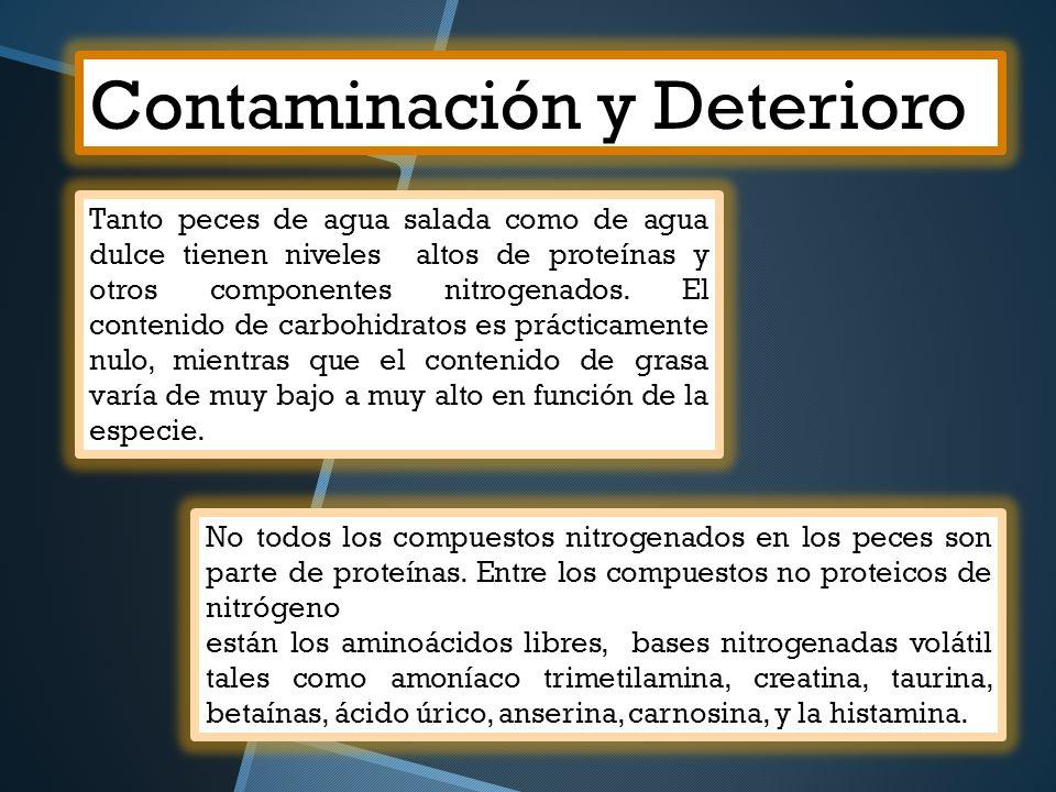 Contaminación y Deterioro