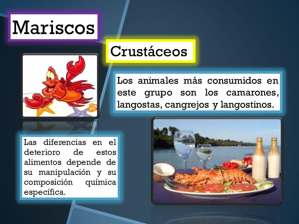Mariscos Crustáceos. Los animales más consumidos en este grupo son los camarones, langostas, cangrejos y langostinos.