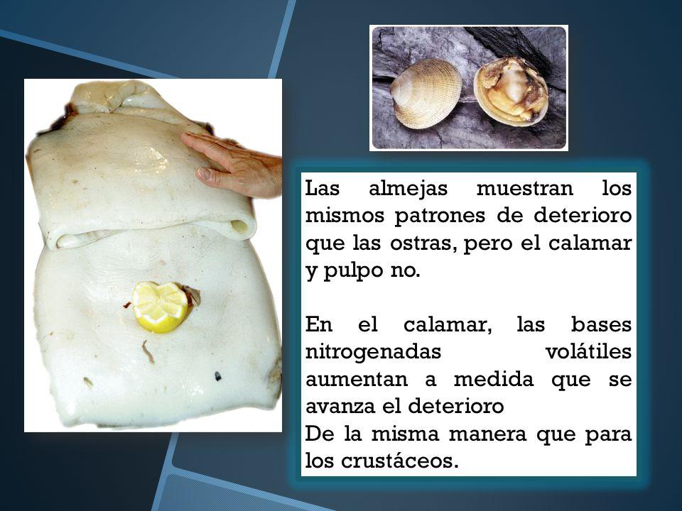 Las almejas muestran los mismos patrones de deterioro que las ostras, pero el calamar y pulpo no.