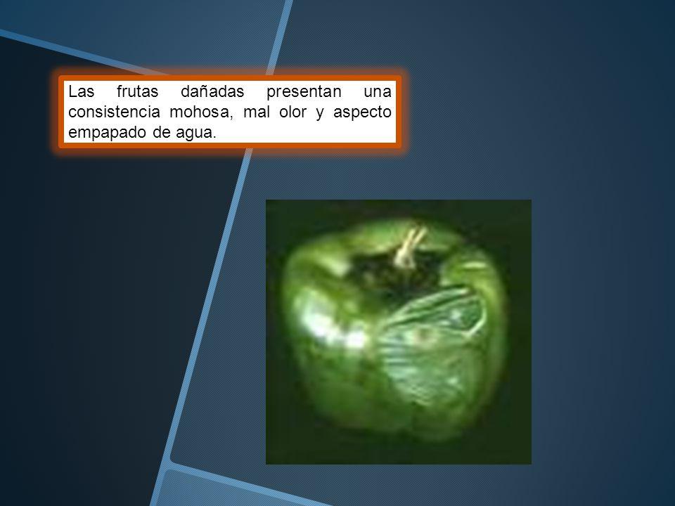 Las frutas dañadas presentan una consistencia mohosa, mal olor y aspecto empapado de agua.