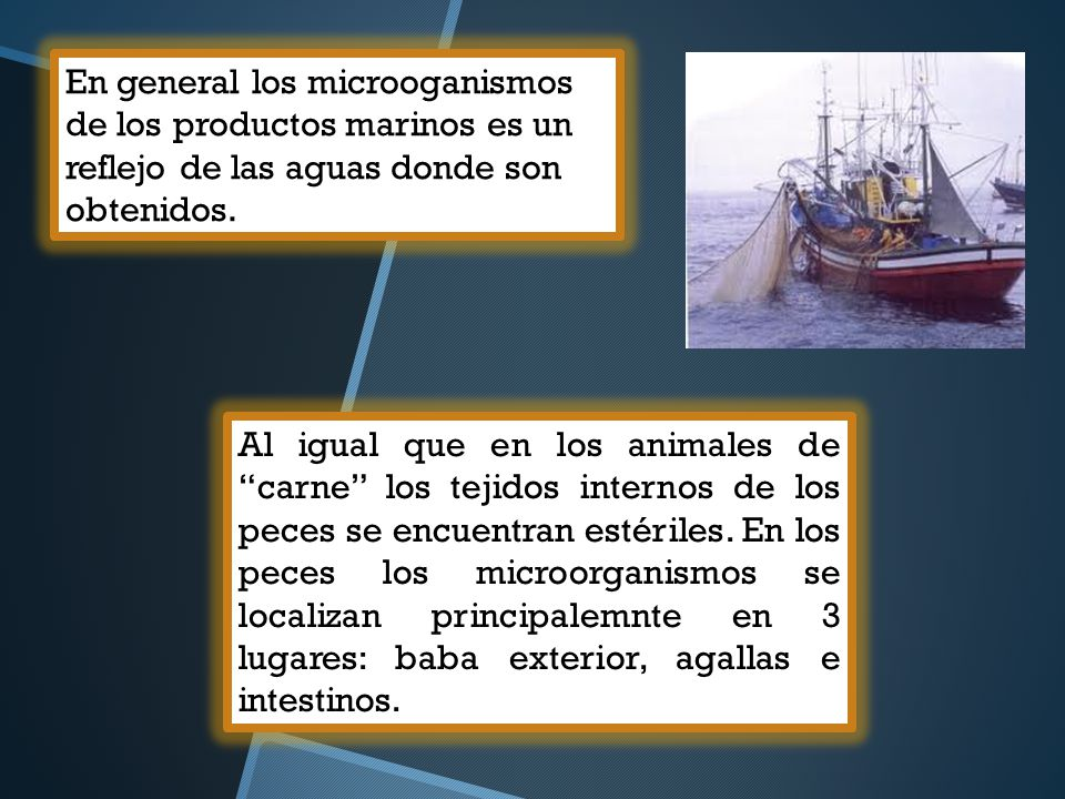 En general los microoganismos de los productos marinos es un reflejo de las aguas donde son obtenidos.