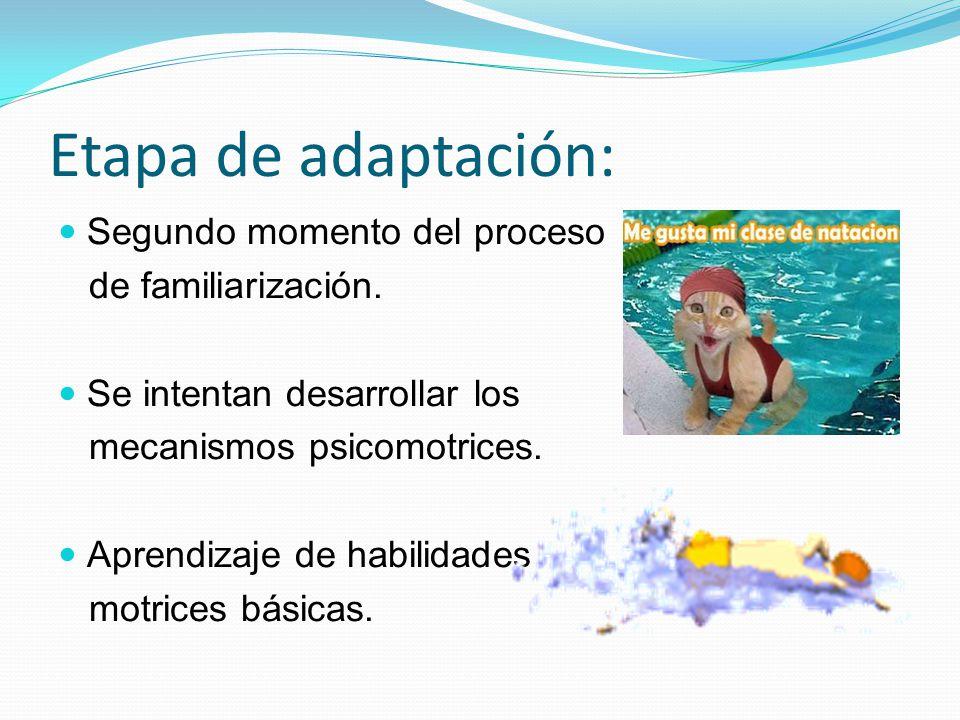 Etapa de adaptación: Segundo momento del proceso de familiarización.