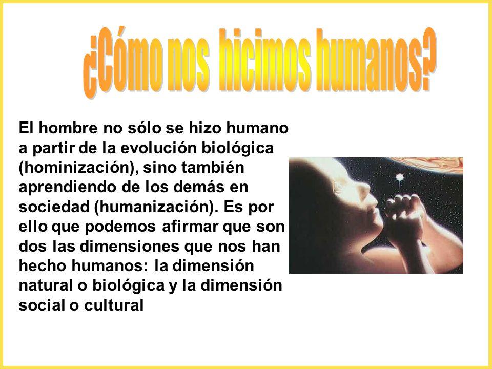 ¿Cómo nos hicimos humanos