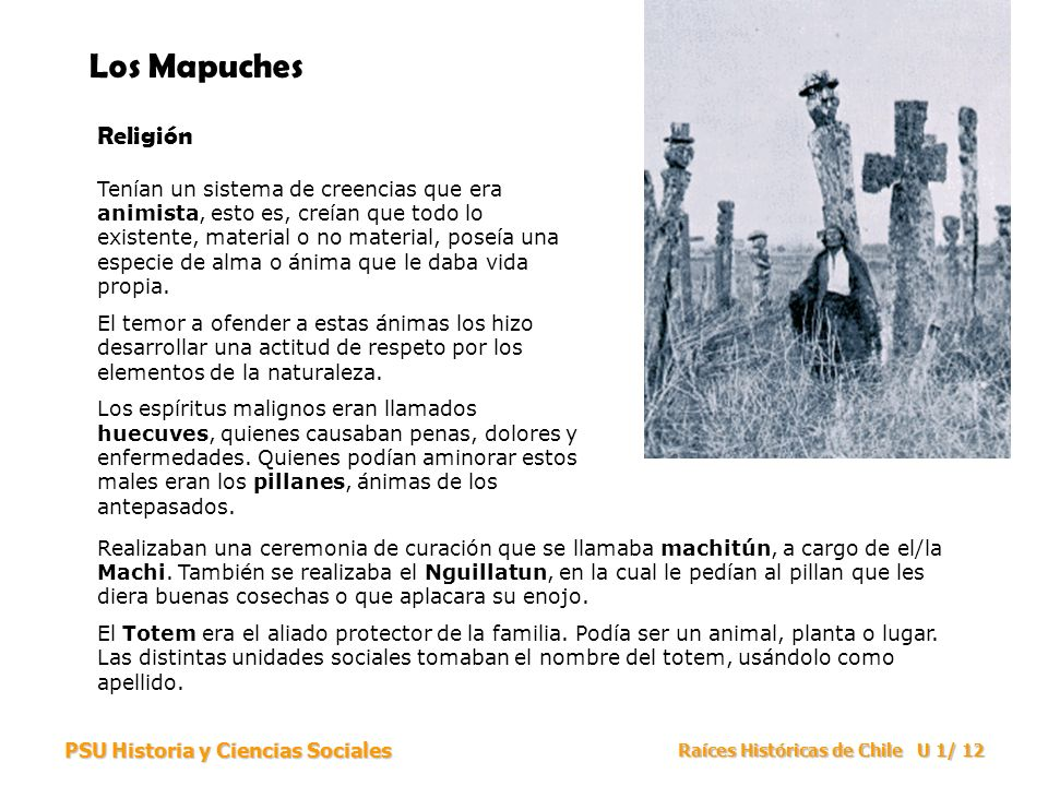 Los Mapuches Religión.