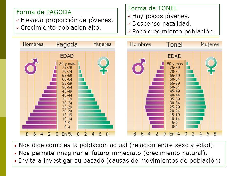 Forma de TONEL Hay pocos jóvenes. Descenso natalidad. Poco crecimiento población. Forma de PAGODA.