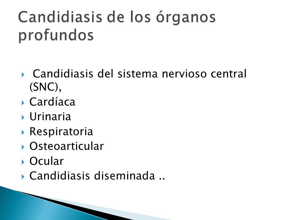 Candidiasis de los órganos profundos