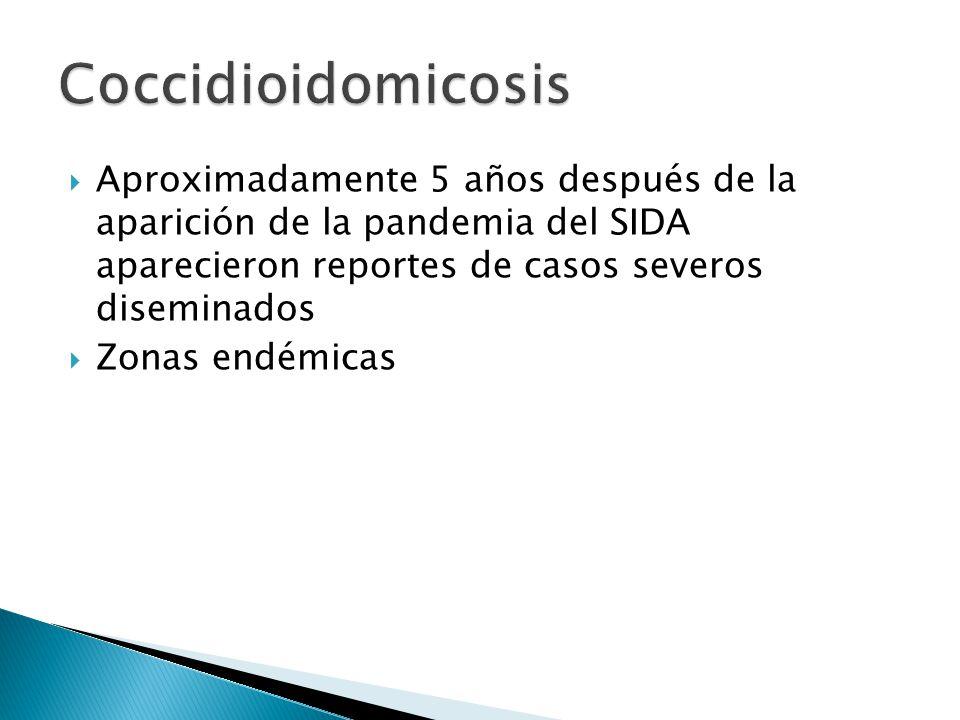 Coccidioidomicosis Aproximadamente 5 años después de la aparición de la pandemia del SIDA aparecieron reportes de casos severos diseminados.