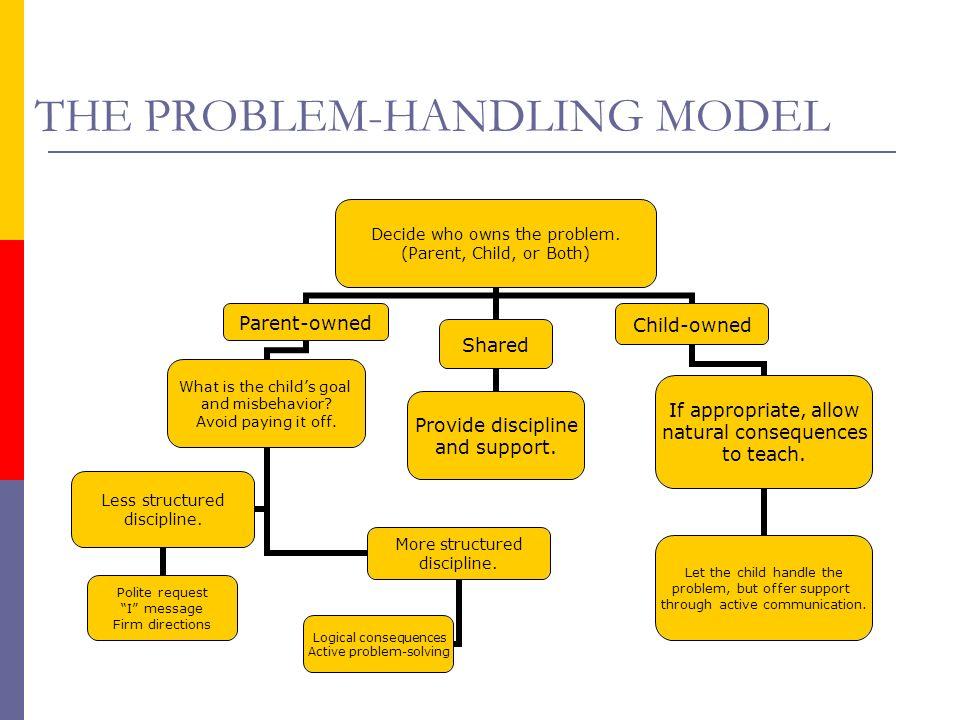 THE PROBLEM-HANDLING MODEL