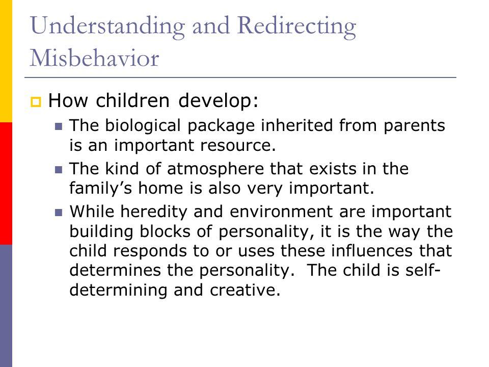 Understanding and Redirecting Misbehavior