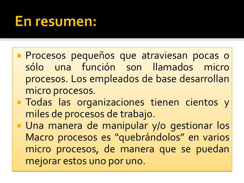 En resumen: Procesos pequeños que atraviesan pocas o sólo una función son llamados micro procesos. Los empleados de base desarrollan micro procesos.