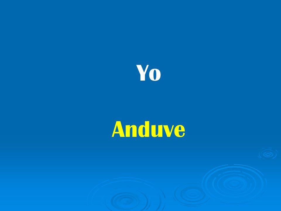 Yo Anduve