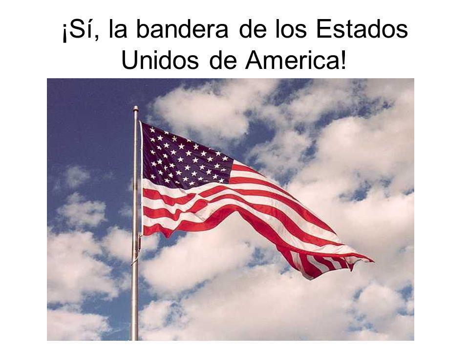 ¡Sí, la bandera de los Estados Unidos de America!