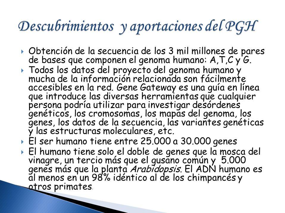 Descubrimientos y aportaciones del PGH