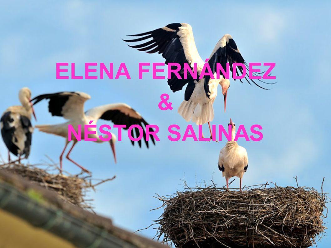 ELENA FERNÁNDEZ & NÉSTOR SALINAS
