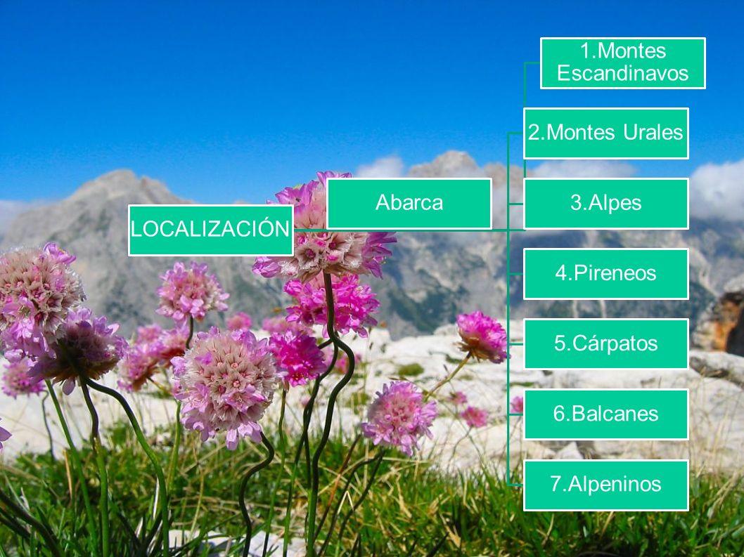 LOCALIZACIÓN 1.Montes Escandinavos. 2.Montes Urales. 3.Alpes. 4.Pireneos. 5.Cárpatos. 6.Balcanes.