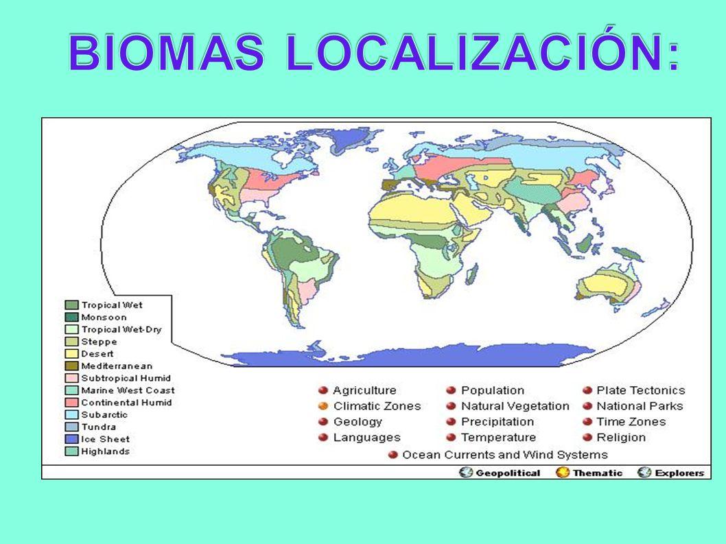 BIOMAS LOCALIZACIÓN: